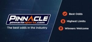 pinnacle sport support