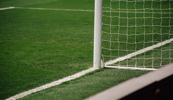 Favori coupe du monde